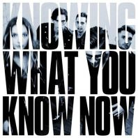 The Marmozets - Knowing What You Know Now [VINYL]