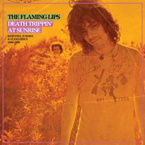 The Flaming Lips - Rarities Compilation (Vinyl)
