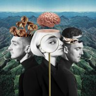 Clean Bandit - What Is Love? (Deluxe) [VINYL]