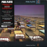 Pink Floyd - A Momentary Lapse of Reason [VINYL]