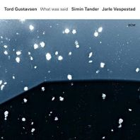 Tord Gustavsen - What Was Said [VINYL]