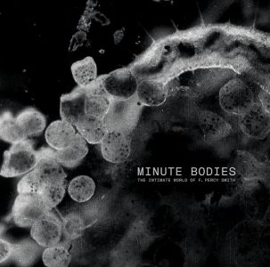 Tindersticks - MINUTE BODIES: THE INTIMATE WORLD OF F. PERCY SMITH (Vinyl)