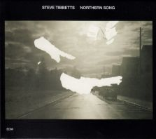 Steve Tibbetts - Northern Song