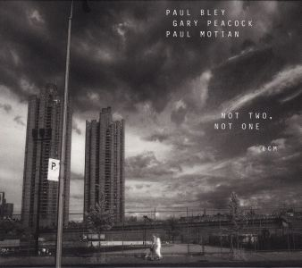 Paul Bley - Not Two, Not One