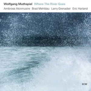 Wolfgang Muthspiel - Where The River Goes