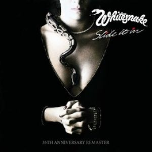 Whitesnake - Slide It In (2019) (Double Vinyl)