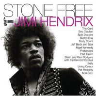 Various Artists - Stone Free: Jimi Hendrix Tribute (RSD 2020. Vinyl)