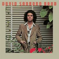 David Sanborn - Promise Me The Moon